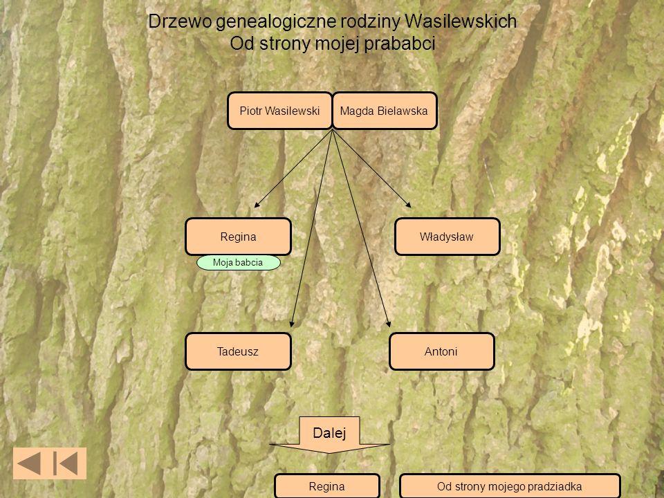 Drzewo genealogiczne rodziny Wasilewskich Od strony mojej prababci