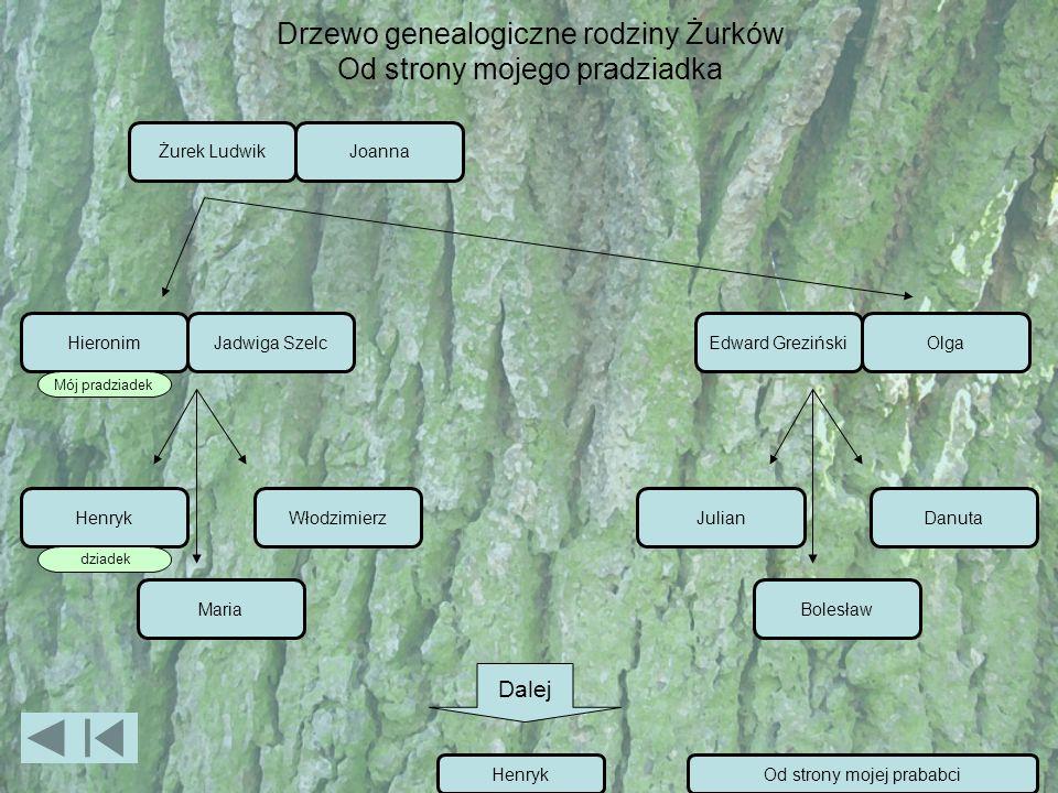 Drzewo genealogiczne rodziny Żurków Od strony mojego pradziadka