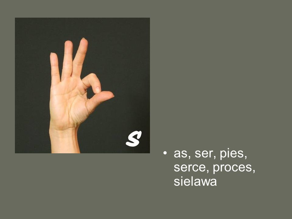 as, ser, pies, serce, proces, sielawa