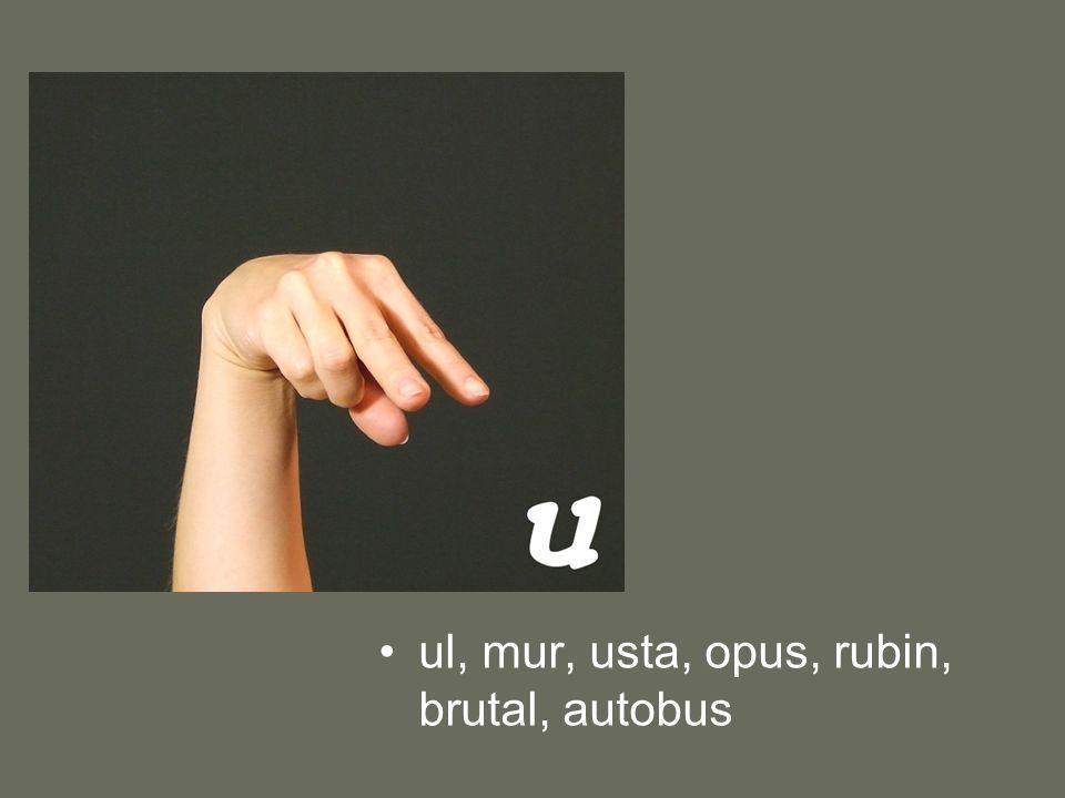ul, mur, usta, opus, rubin, brutal, autobus