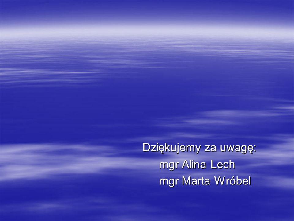 Dziękujemy za uwagę: mgr Alina Lech mgr Marta Wróbel
