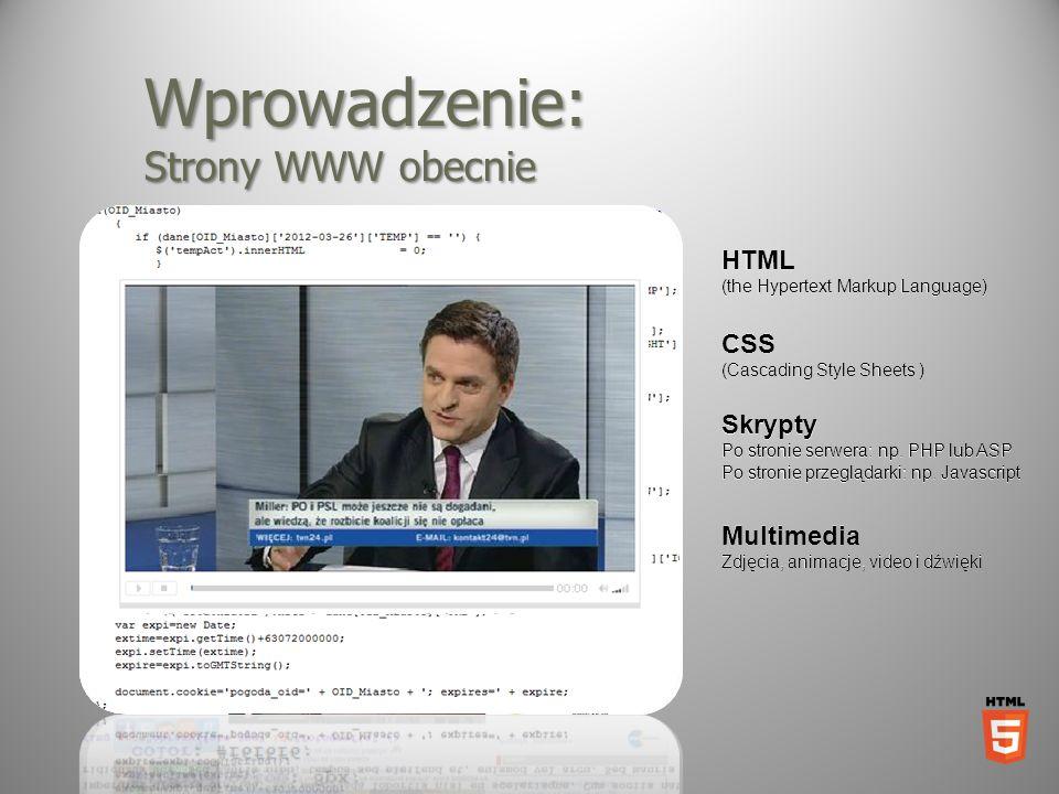 Wprowadzenie: Strony WWW obecnie