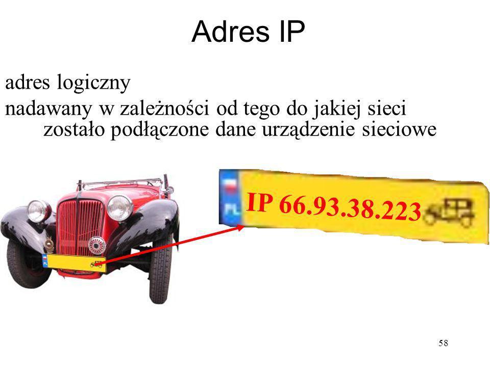 Adres IP IP 66.93.38.223 adres logiczny