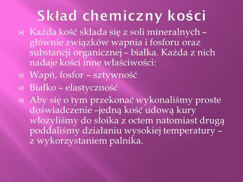 Skład chemiczny kości