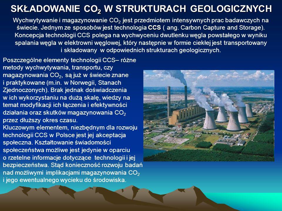 SKŁADOWANIE CO2 W STRUKTURACH GEOLOGICZNYCH