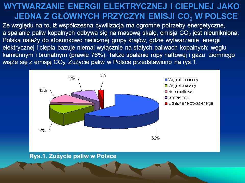 WYTWARZANIE ENERGII ELEKTRYCZNEJ I CIEPLNEJ JAKO JEDNA Z GŁÓWNYCH PRZYCZYN EMISJI CO2 W POLSCE