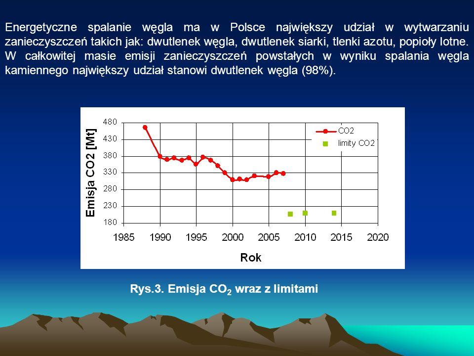 Energetyczne spalanie węgla ma w Polsce największy udział w wytwarzaniu zanieczyszczeń takich jak: dwutlenek węgla, dwutlenek siarki, tlenki azotu, popioły lotne. W całkowitej masie emisji zanieczyszczeń powstałych w wyniku spalania węgla kamiennego największy udział stanowi dwutlenek węgla (98%).