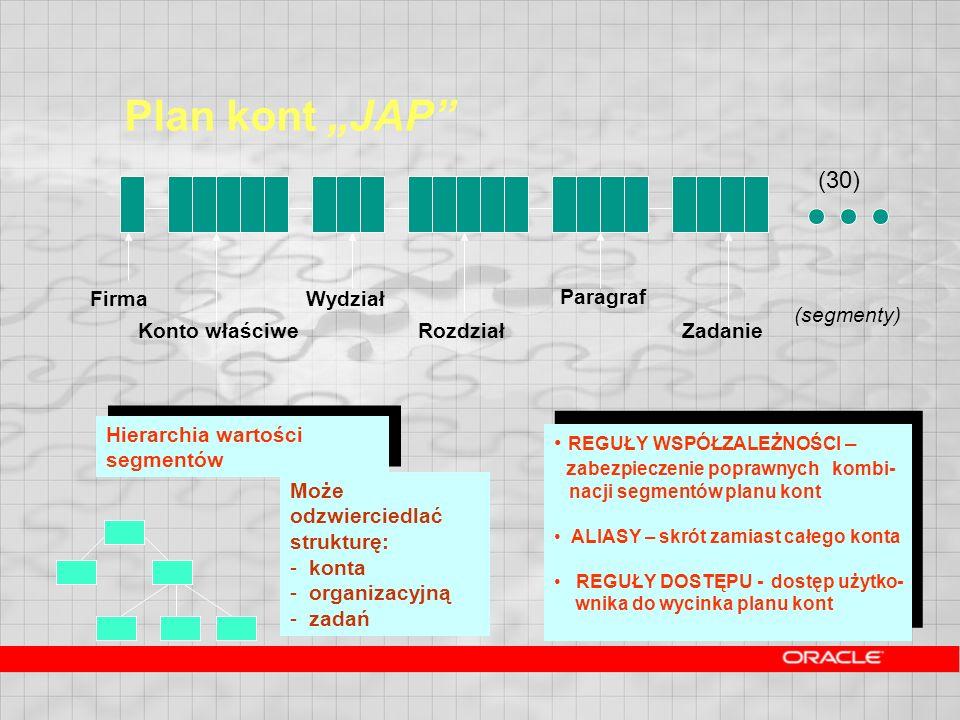"""Plan kont """"JAP (30) Firma Wydział Paragraf (segmenty) Konto właściwe"""