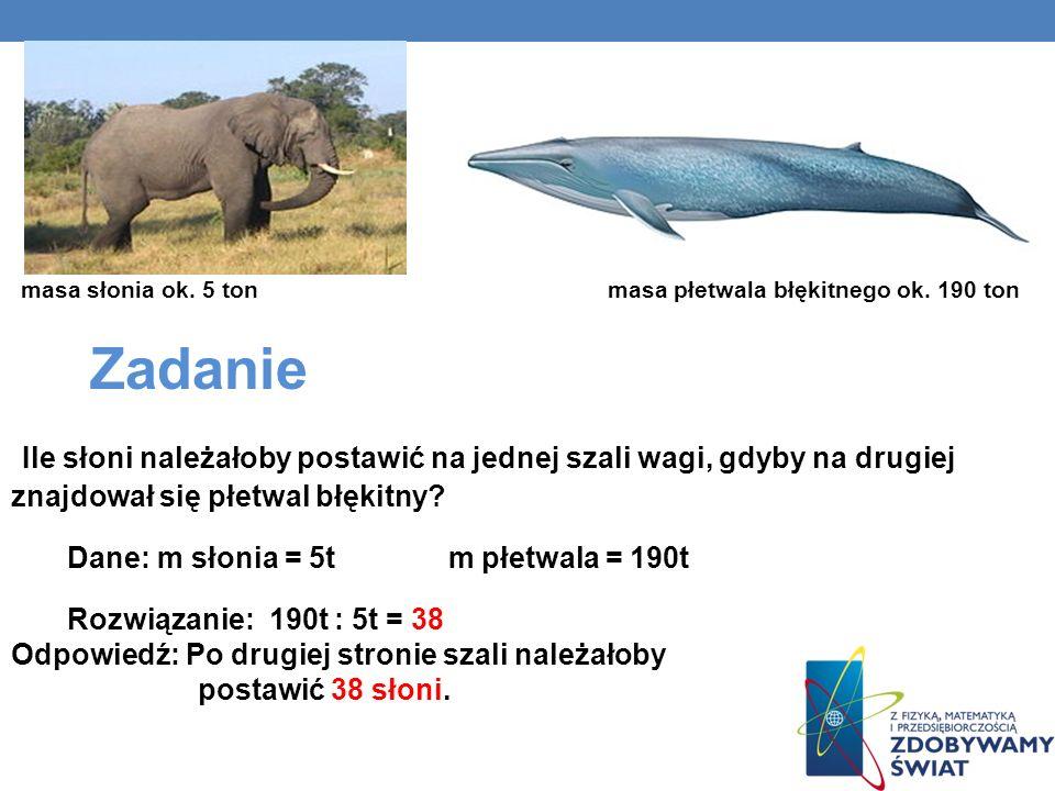 masa słonia ok. 5 ton masa płetwala błękitnego ok. 190 ton