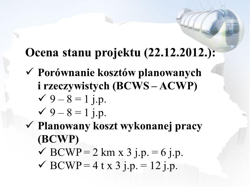Ocena stanu projektu (22.12.2012.):