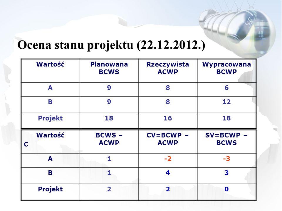 Ocena stanu projektu (22.12.2012.)