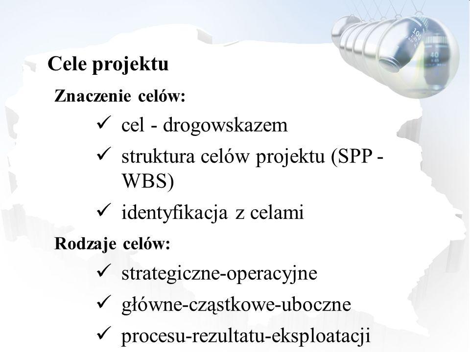 struktura celów projektu (SPP - WBS) identyfikacja z celami