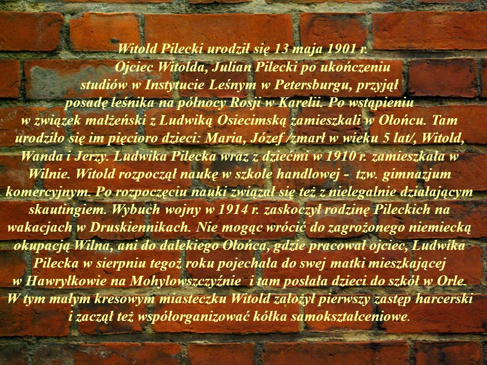 Ojciec Witolda, Julian Pilecki po ukończeniu
