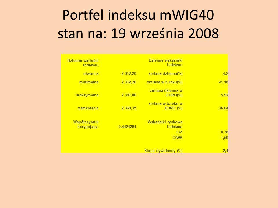 Portfel indeksu mWIG40 stan na: 19 września 2008