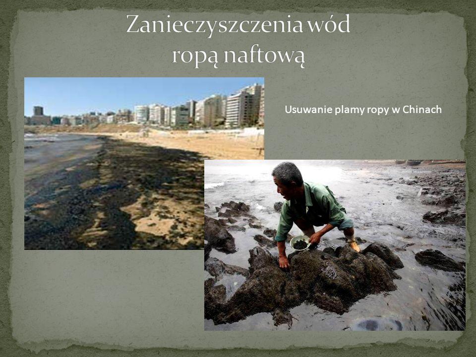 Zanieczyszczenia wód ropą naftową