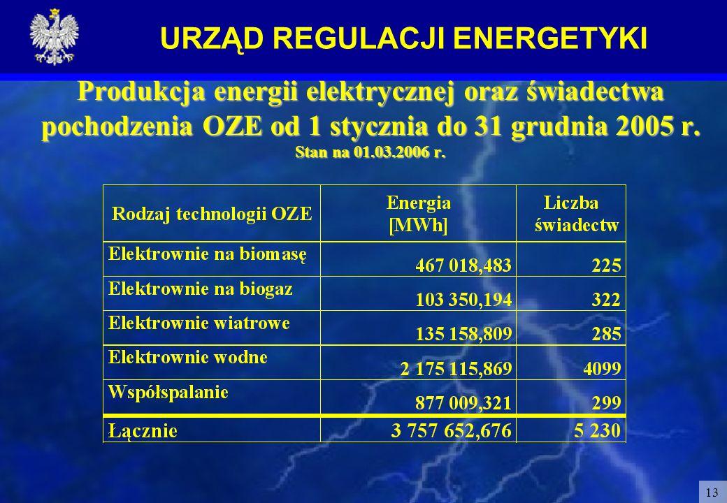 Produkcja energii elektrycznej oraz świadectwa pochodzenia OZE od 1 stycznia do 31 grudnia 2005 r.