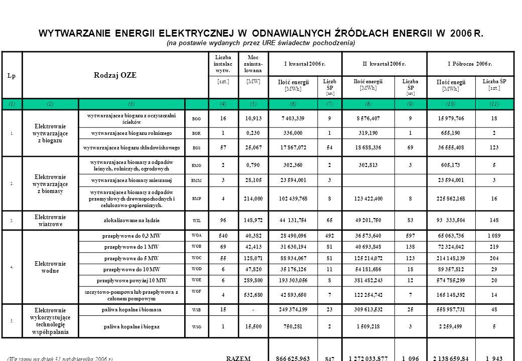 WYTWARZANIE ENERGII ELEKTRYCZNEJ W ODNAWIALNYCH ŹRÓDŁACH ENERGII W 2006 R.