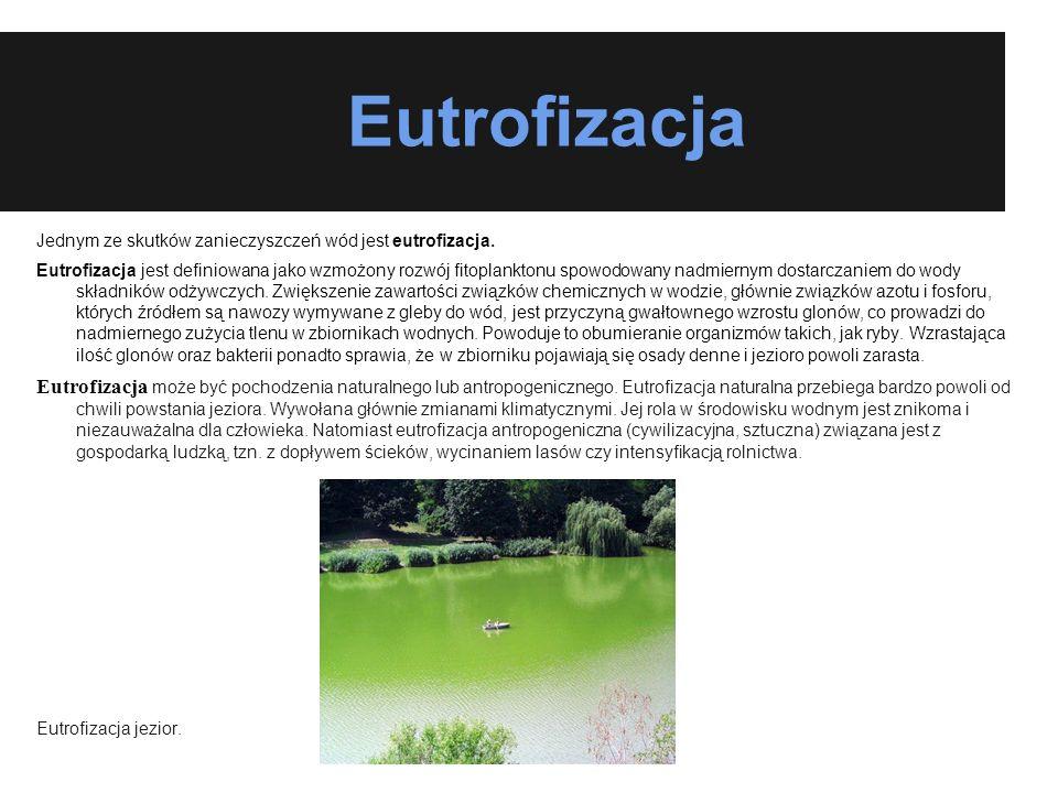 Eutrofizacja Jednym ze skutków zanieczyszczeń wód jest eutrofizacja.