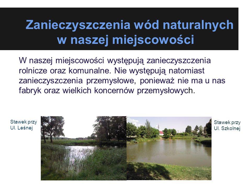 Zanieczyszczenia wód naturalnych w naszej miejscowości