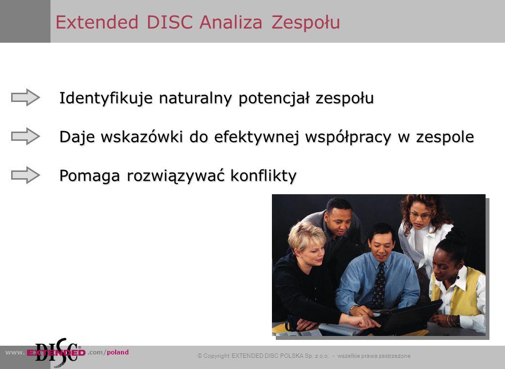 Extended DISC Analiza Zespołu
