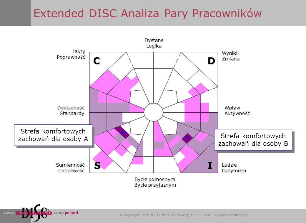 Extended DISC Analiza Pary Pracowników