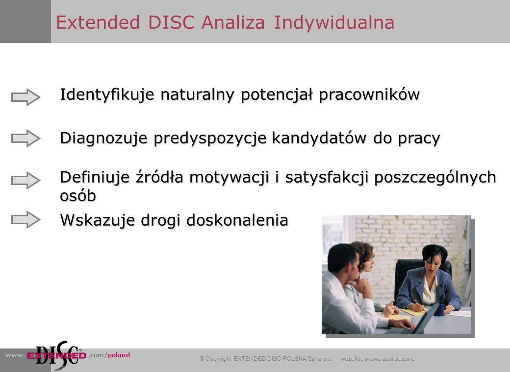 Extended DISC Analiza Indywidualna