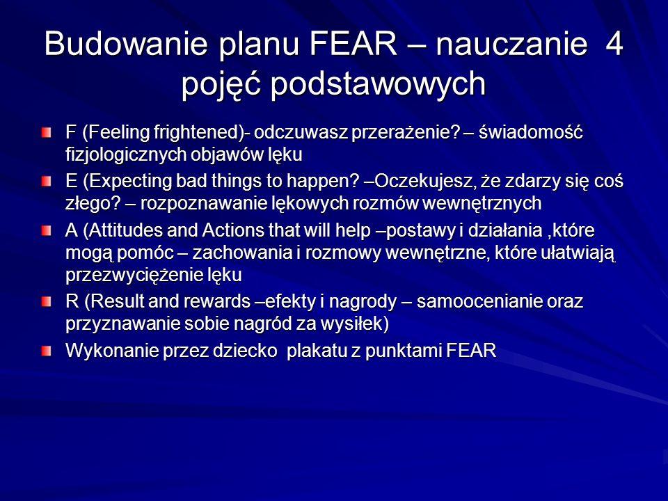 Budowanie planu FEAR – nauczanie 4 pojęć podstawowych
