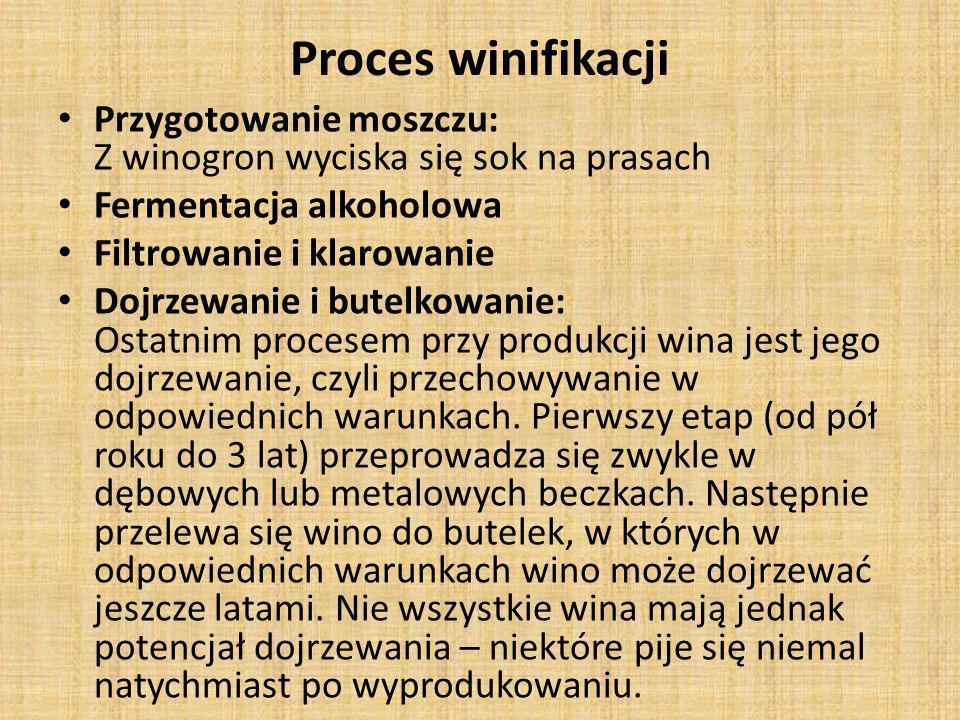 Proces winifikacji Przygotowanie moszczu: Z winogron wyciska się sok na prasach. Fermentacja alkoholowa.