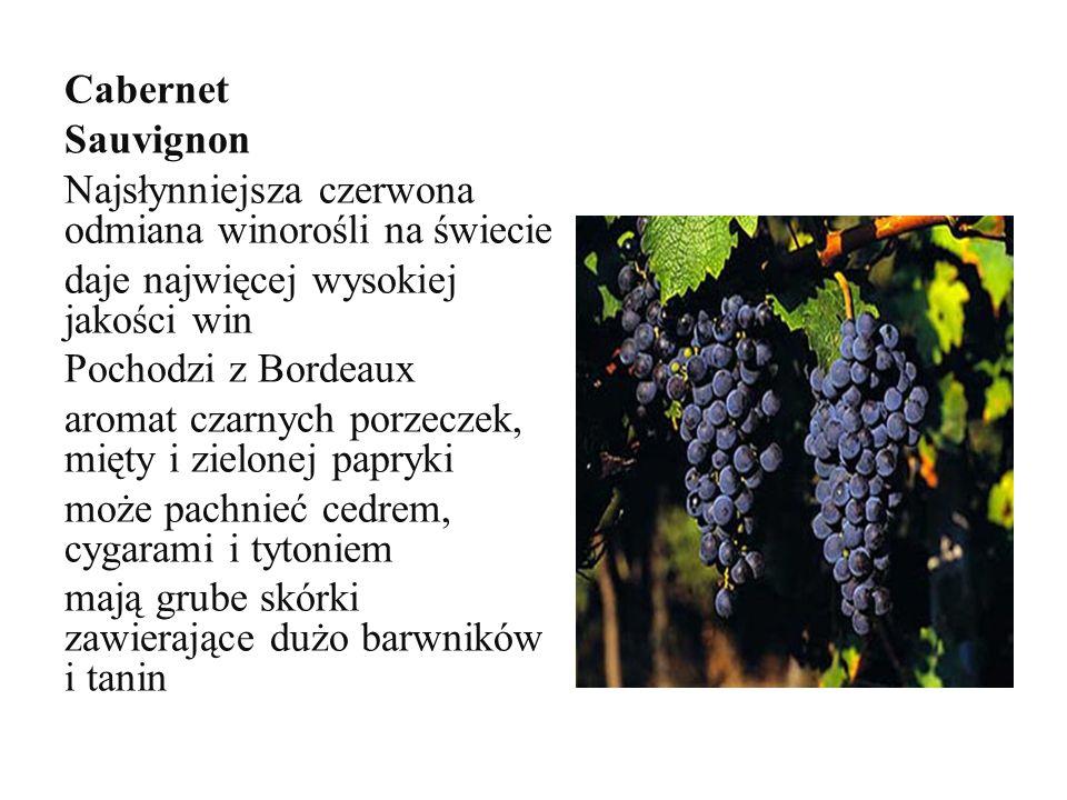 Cabernet Sauvignon Najsłynniejsza czerwona odmiana winorośli na świecie. daje najwięcej wysokiej jakości win.