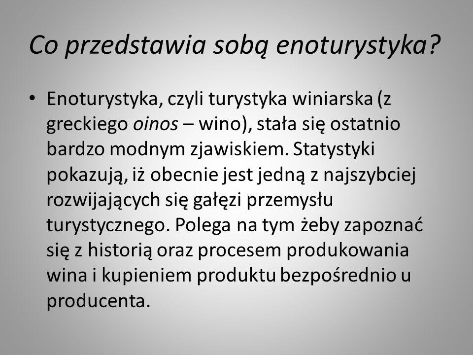 Co przedstawia sobą enoturystyka