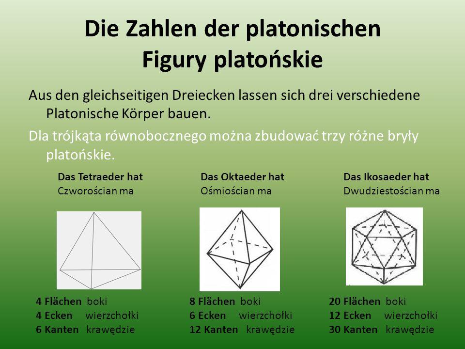 Die Zahlen der platonischen Figury platońskie