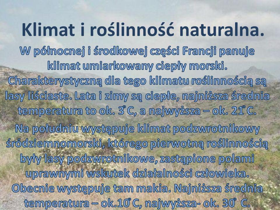 Klimat i roślinność naturalna.