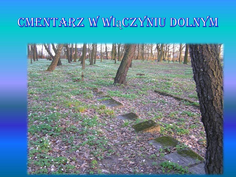 Cmentarz w Wiączyniu Dolnym
