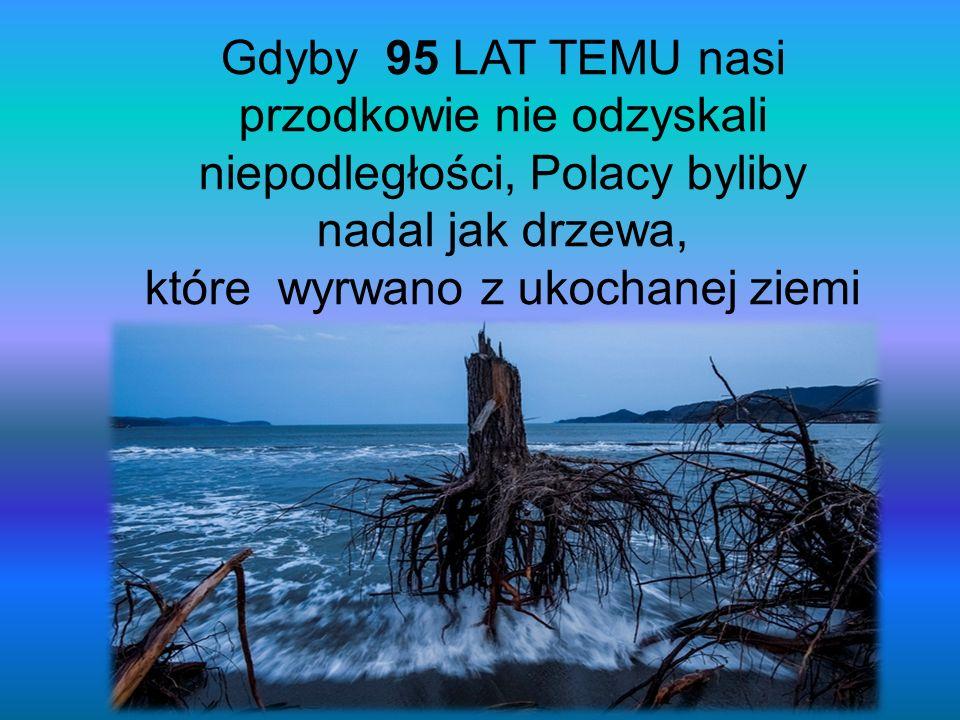 Gdyby 95 LAT TEMU nasi przodkowie nie odzyskali niepodległości, Polacy byliby nadal jak drzewa, które wyrwano z ukochanej ziemi