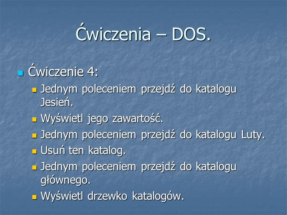 Ćwiczenia – DOS. Ćwiczenie 4: