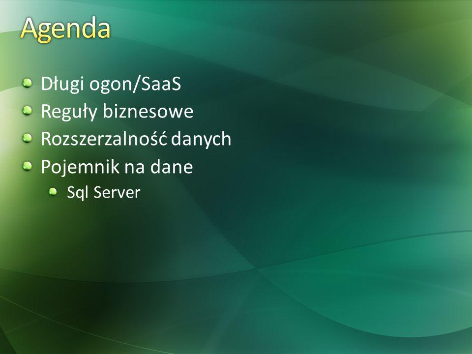 Agenda Długi ogon/SaaS Reguły biznesowe Rozszerzalność danych