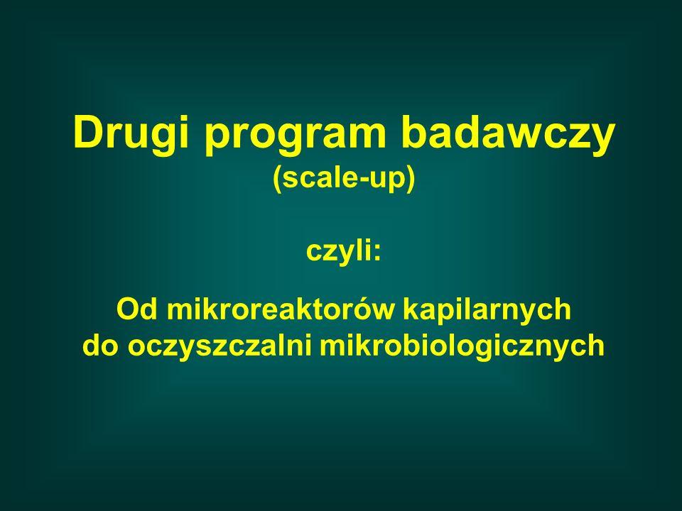 Drugi program badawczy