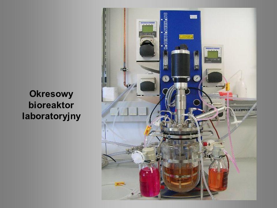 Okresowy bioreaktor laboratoryjny