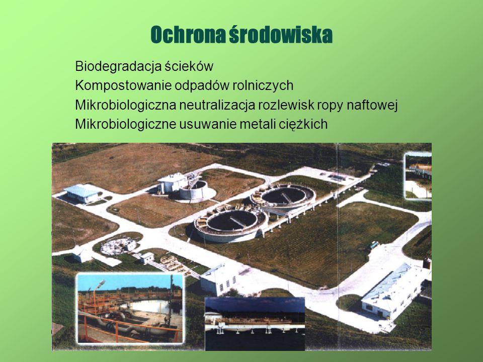 Ochrona środowiska Biodegradacja ścieków