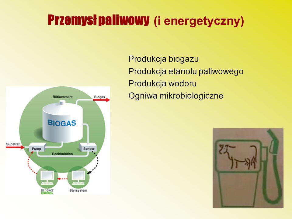 Przemysł paliwowy (i energetyczny)