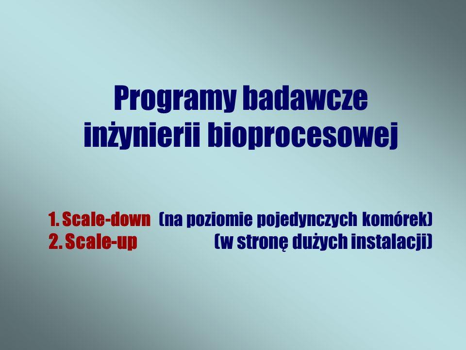 Programy badawcze inżynierii bioprocesowej 1