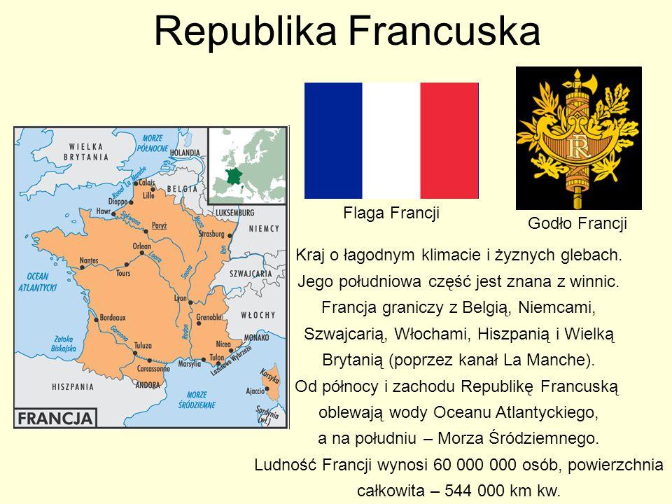 Republika Francuska Flaga Francji Godło Francji