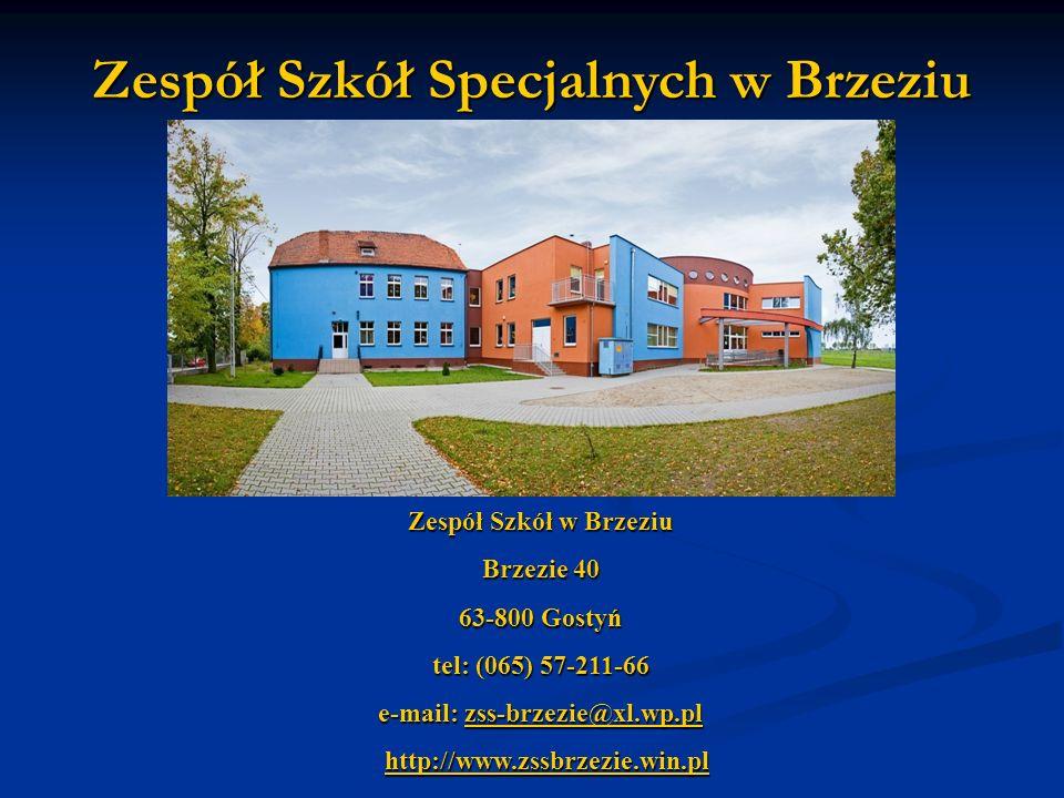 Zespół Szkół Specjalnych w Brzeziu e-mail: zss-brzezie@xl.wp.pl