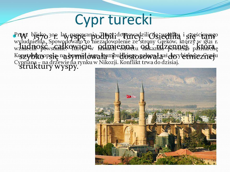Cypr turecki