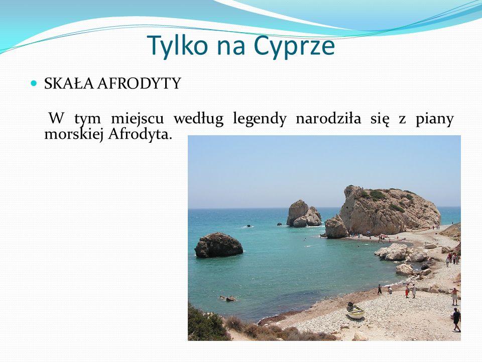 Tylko na Cyprze SKAŁA AFRODYTY