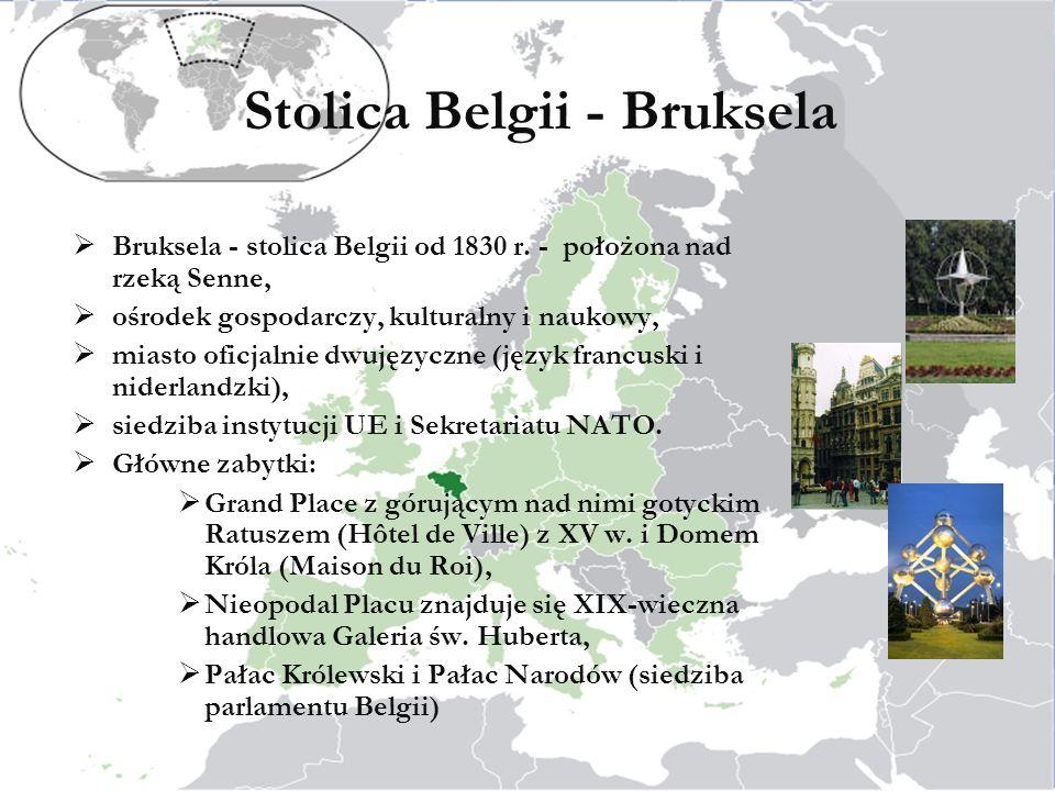 Stolica Belgii - Bruksela