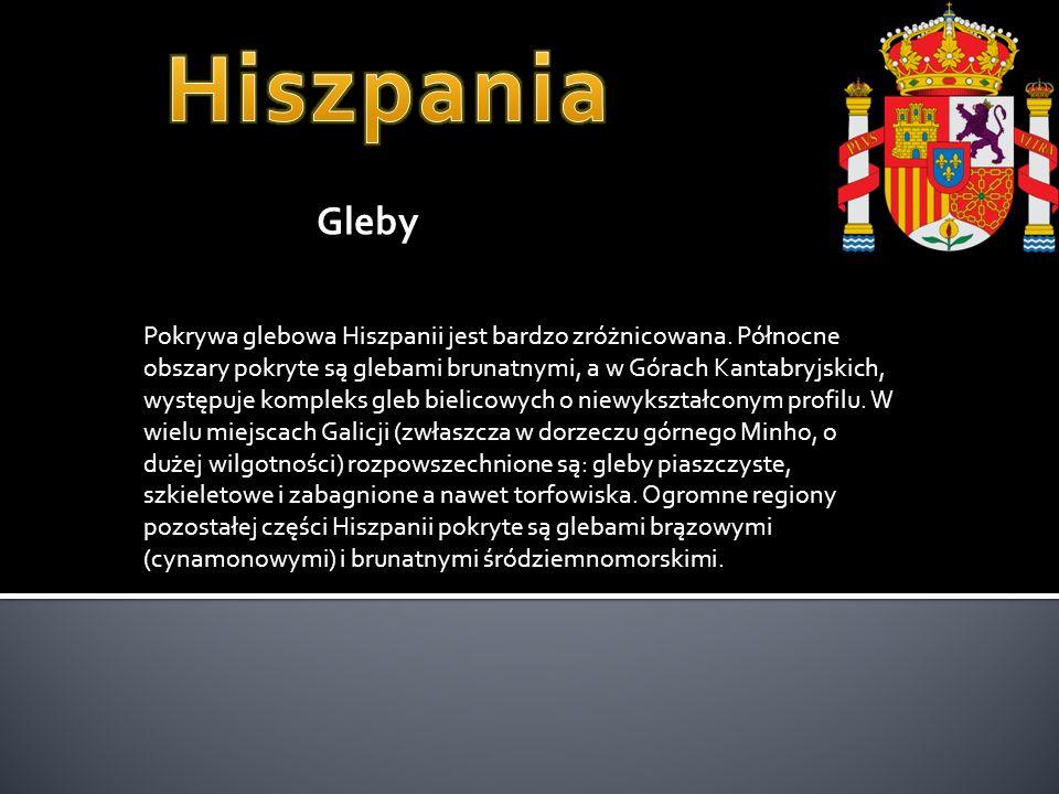 Hiszpania Gleby.