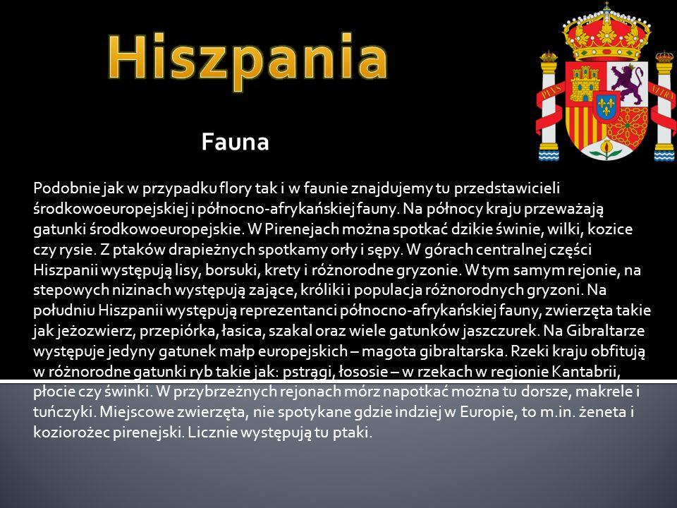 Hiszpania Fauna.