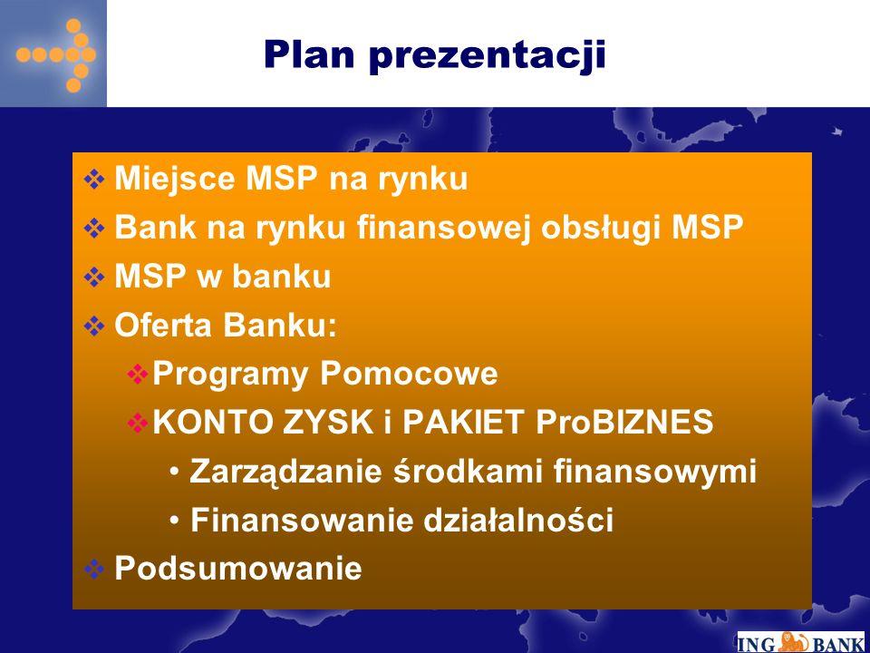 Plan prezentacji Miejsce MSP na rynku