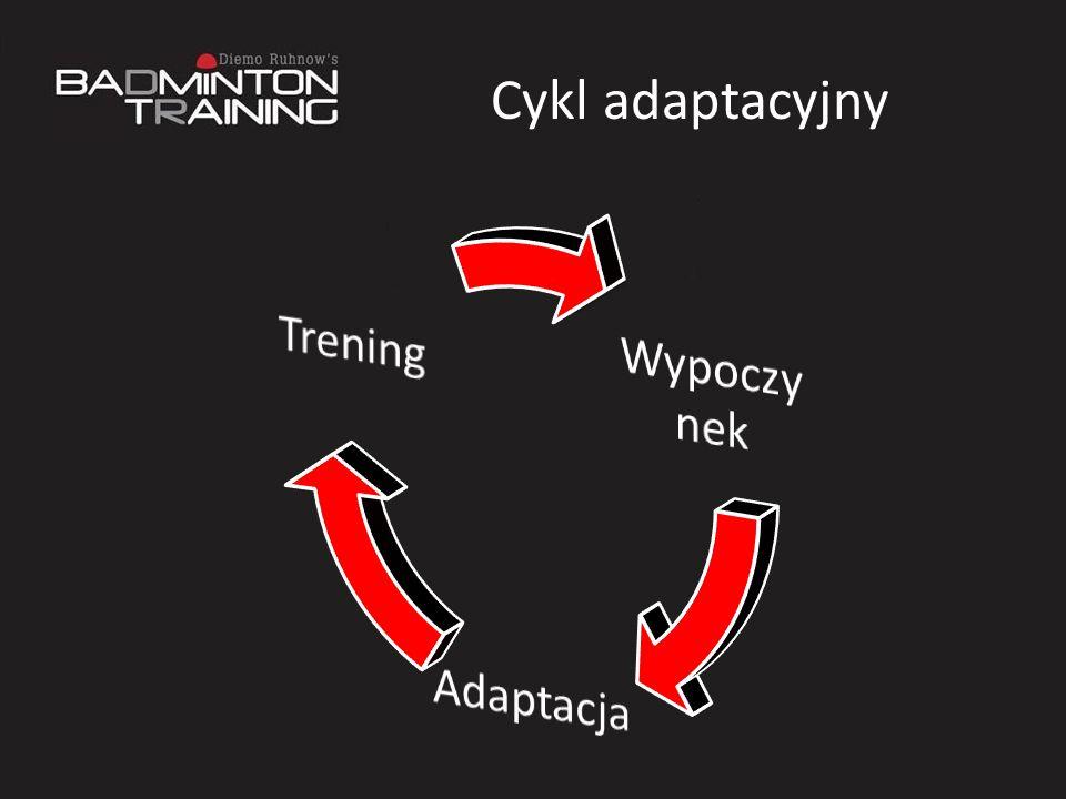 Cykl adaptacyjny Wypoczynek Adaptacja Trening